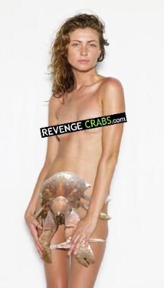 revenge-crabs-hotty-crabby_230x404